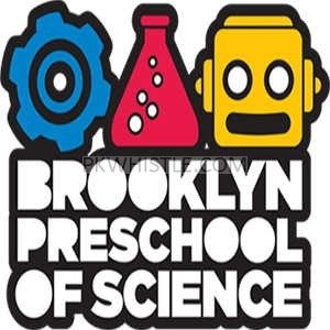 Provides Stem Learning In Summer Camp Brooklyn Ny,  by Bpos Team