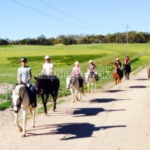 Nunimbah Valley Adventure Trails For Horse Riding Training
